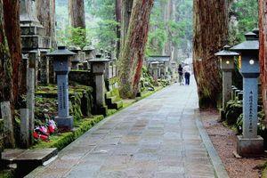 Koyasan begraafplaats, Japan - foto: pixabay