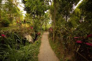 Munduk - Authenticiteit - Natuur - Bali - Indonesie - foto: flickr