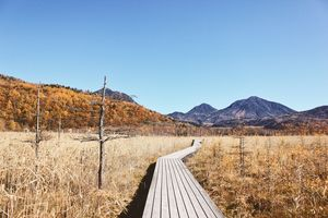 Nikko National Park, Japan - foto: unsplash