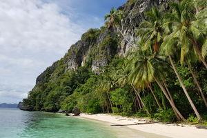 strand met palmbomen Palawan - Filipijnen - Intas - CTTO