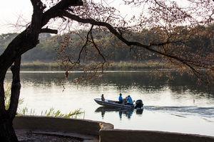 Divava Okavango Lodge - boottocht - Zambezi - Namibie - foto: Hakusembe River Lodge