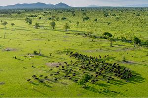 Selous Game Reserve - landschap - Tanzania - Roho Ya Selous - foto: Roho Ya Selous