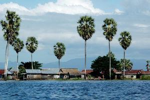 Sengkang - Drijvend Dorp - Lake Tempe - Indonesie - foto: lokale agent
