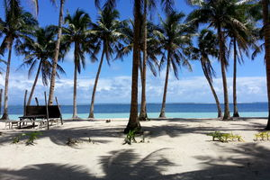 strand met palmbomen - Siargao - Filipijnen