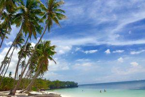 strand met palmbomen - Siquijor - Filipijnen - Intas - CTTO