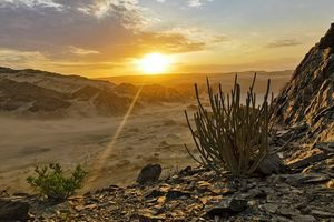 Skeleton Coast - Namibie - foto: pixabay