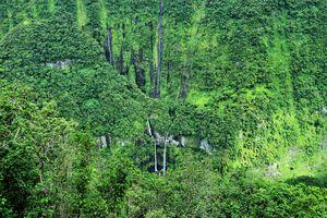 Takamaka - Réunion