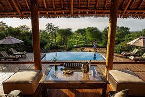 Tarangire Treetops Camp - zwembad - Tarangire National Par - Tanzania