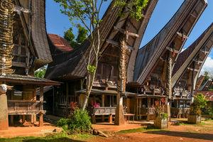 Tongkonans - Tana Toraja - Sulawesi - Indonesie - foto: flickr