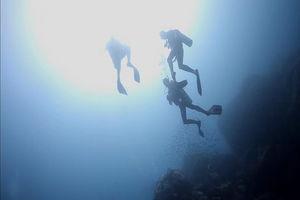 duikers - Koh Tao, Thailand - Algemeen