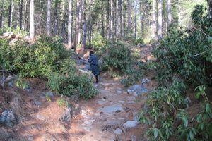 wandelen in omgeving van Haa - Haa - Bhutan