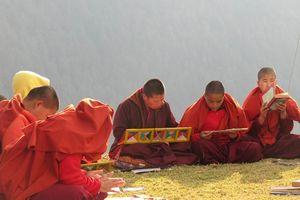 studerende nonnen bij Punakha - Punakha - Bhutan