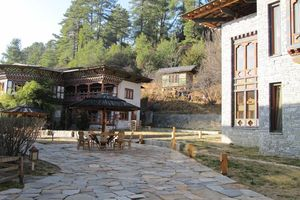 terras van Mountain Lodge - Mountain Lodge - Bhutan - foto: Mieke Arendsen