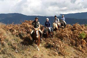Paardrijden in groep, Bumthang - Bumthang - Bhutan