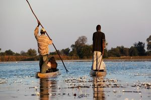 Bootjes op de delta - Botswana