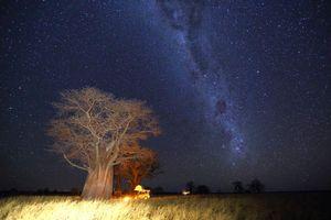 Nxai Pan bij nacht - Nxai Pan - Botswana