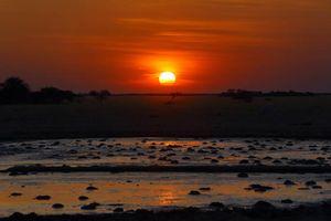 Nxai Pan bij zonsondergang - Nxai Pan - Botswana