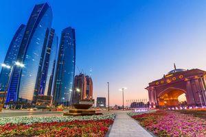 bloemen en skyline Abu Dhabi - Abu Dhabi - Dubai