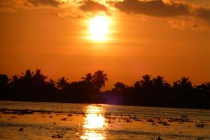 Zonsondergang in de Backwaters - Backwaters - India