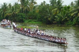 Snake Boat Race Backwaters/Kerala 3 - India