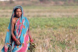 tribal lady in Orissa - Orissa - India