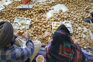 aardappels schillen gurudwara - Delhi - India