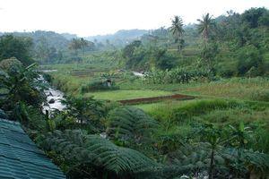 uitzicht - GG House - Happy Valley - Bogor - Indonesië