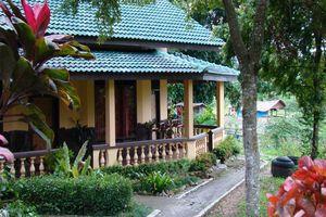 cottage - Bukit Lawang Cottages - Bukit Lawang - Indonesië