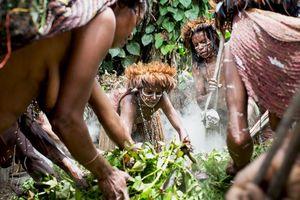 Dani vrouwen in de Baliem vallei - Baliem vallei - Indonesië