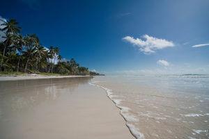 mombasa beach almanara resort