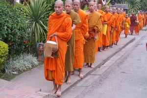 offerronde monniken - Luang Prabang - Laos