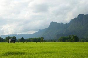 rijstvelden en bergen - Laos