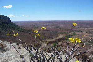 uitzicht vanaf plateau