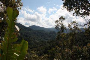 Landschap Ranomafana - Ranomafana - Madagaskar
