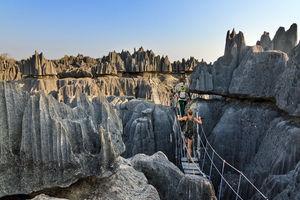 Tsingy de Bemaraha 2 - Tsingy de Bemaraha - Madagaskar