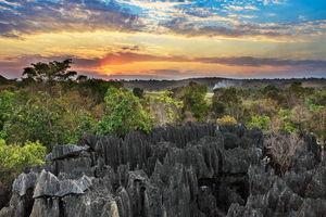 Tsingy de Bemaraha 1 - Tsingy de Bemaraha - Madagaskar