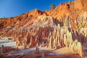 Tsingy - Tsingy - Madagaskar