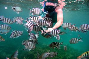 snorkelen - Mauritius