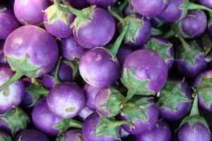 aubergines markt - Myanmar
