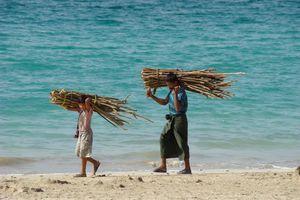 mannen met brandhout op strand - Ngapali - Myanmar