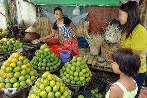 mango-kraampje onderweg naar Pyin Oo Lwin - Mandalay - Myanmar - foto: Floor Ebbers