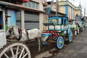 paard en wagen in Pyin Oo Lwin - Pyin Oo Lwin - Myanmar