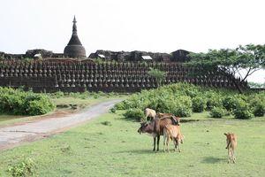 tempel Mrauk U - Mrauk U - Myanmar