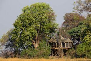 suite van Nambwa Tented Lodge - Nambwa Tented Lodge - Namibië