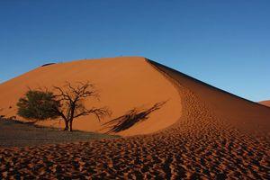 duinen Sossusvlei - Sossusvlei - Namibië
