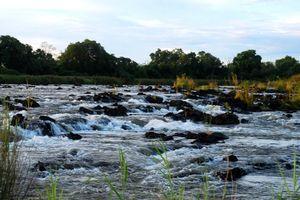omgeving van Divava Okavango Resort - Divava Okavango Resort - Namibië