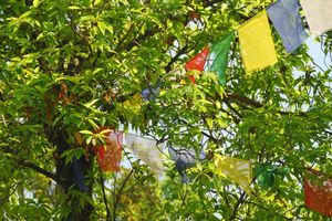 boedhitische vlaggen