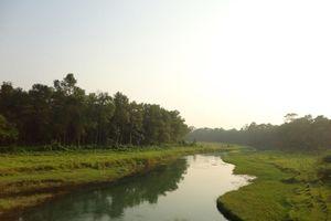 rivier in de natuur, Chitwan