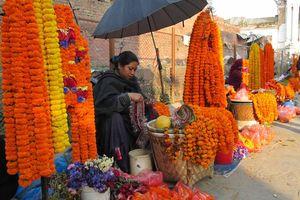 Bloemenverkoopster, Patan - Patan - Nepal