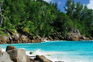 Strand met begroeiing - Seychellen
